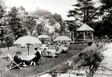 Lee Bay - Fuchsia Glen Tea Gardens