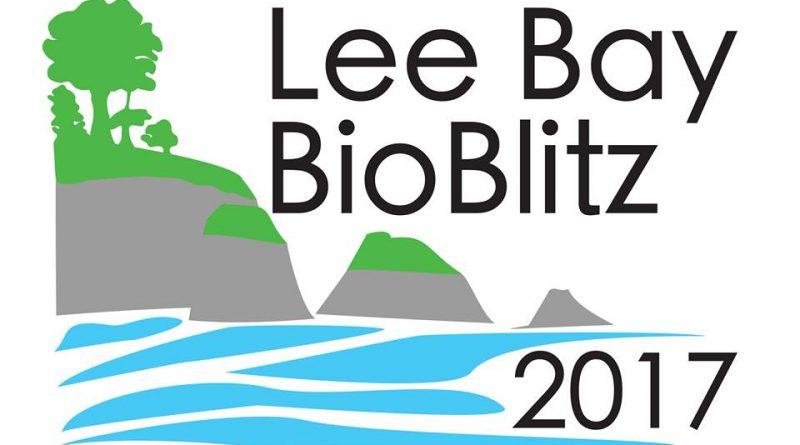 Lee Bay BioBlitz
